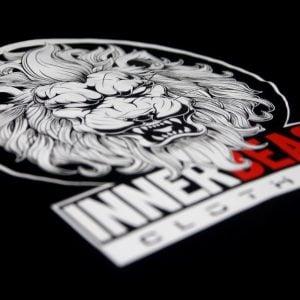 lion-angle